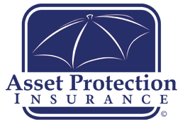 Asset Protection Insurance